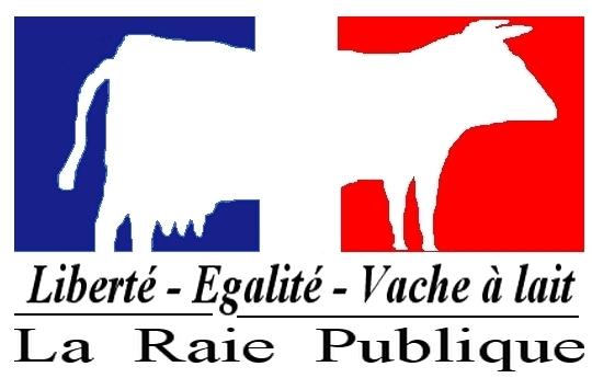 http://www.dudelire.com/images/gal/76e142u-log.jpg