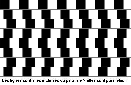Illusions d'optique... L87r169-les_lignes_droites